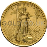 2002 1/2 oz Gold America Eagle