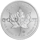 1oz Canadian Maple Silver Coin (2019)