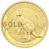 Gold Nugget 1oz (2020)