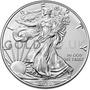 1oz American Eagle Silver Coin (2020)