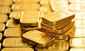 Gold highest since 2011 as second-wave fears hinder economic recovery